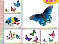c_200_150_16777215_00_images_Bigprint_38.jpg