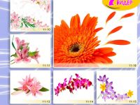 c_200_150_16777215_00_images_Bigprint_44.jpg