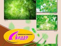 c_200_150_16777215_00_images_fotopechat_18.jpg