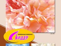 c_200_150_16777215_00_images_fotopechat_79.jpg