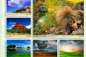 c_300_200_16777215_00_images_Bigprint_04.jpg