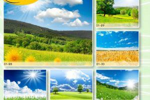 c_300_200_16777215_00_images_Bigprint_05(1).jpg