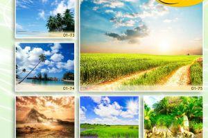 c_300_200_16777215_00_images_Bigprint_10.jpg