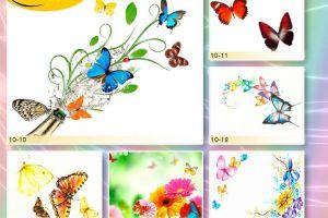 c_300_200_16777215_00_images_Bigprint_39.jpg