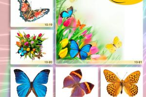 c_300_200_16777215_00_images_Bigprint_40.jpg