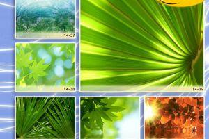 c_300_200_16777215_00_images_Bigprint_66.jpg