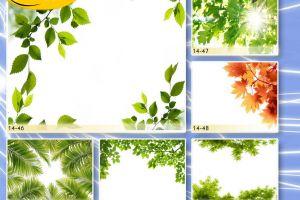 c_300_200_16777215_00_images_Bigprint_67.jpg