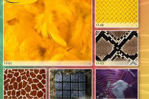 c_300_200_16777215_00_images_Bigprint_73.jpg