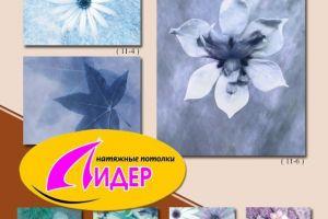 c_300_200_16777215_00_images_fotopechat_32.jpg