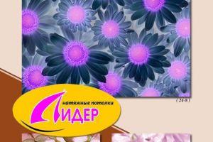 c_300_200_16777215_00_images_fotopechat_78.jpg