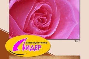 c_300_200_16777215_00_images_fotopechat_85.jpg